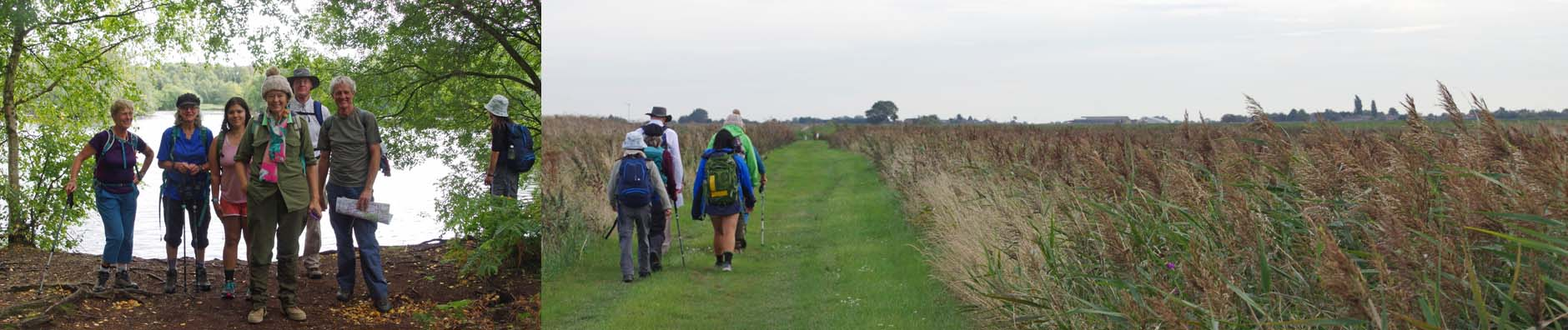 Great Fen walk