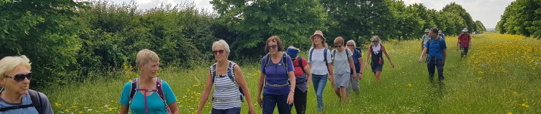 Wednesday Wimpole walk - June 2021